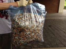 EKU Employees and Students Collect 15 Pounds of Butts